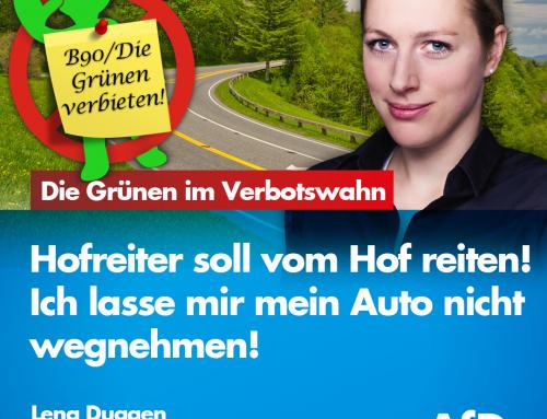 +++ Hofreiter will Verbot für Benziner und Diesel+++