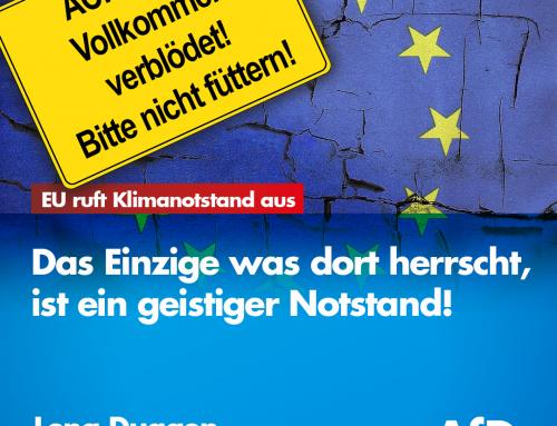 Eilmeldung: Die EU ruft den EU-weiten Klimanotstand aus