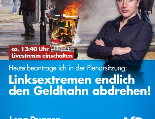 Plenarsitzung in Brandenburg: Linksextremen den Geldhahn zudrehen