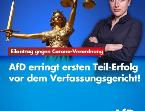 AfD erringt ersten Teil-Erfolg in Corona-Klage