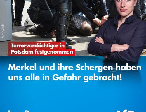 Polizei nimmt Terrorverdächtigen Syrer in Potsdam fest – Merkel und ihre Schergen haben uns alle in Gefahr gebracht!